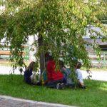 Kinder unter Baum Axams